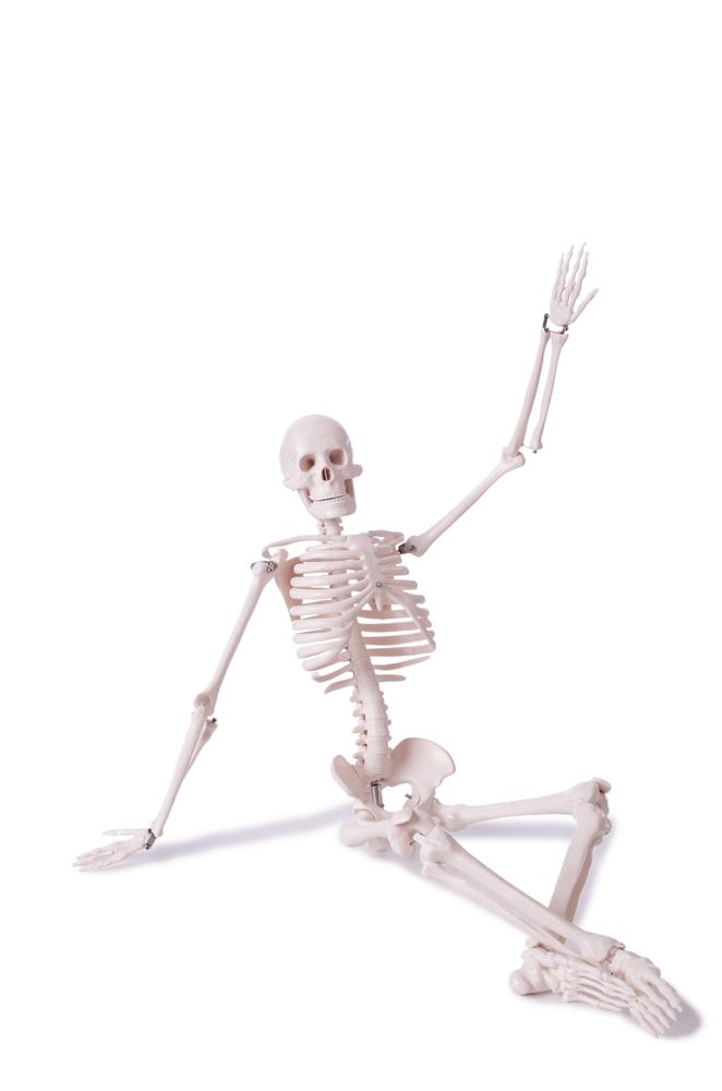 того, скелет картинки сидит в интернете отпрыска