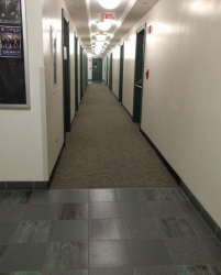 A tad depressing, but it lacks the prison-like aesthetic of a Carman hallway