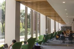 A Story Of Defeat: The Milstein Study Rooms