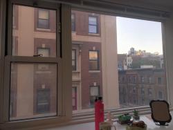 Freshpeople Housing Reviews 2019: Carman Single